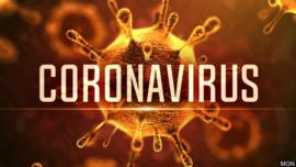 Natuurlijke manier van desinfecteren van virussen o.a. Corona virus SARS-COV-2