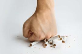 De beste voedingsmiddelen als je gerookt hebt.