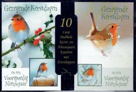 Gezegende Kerstdagen en een Voorspoedig Nieuwjaar