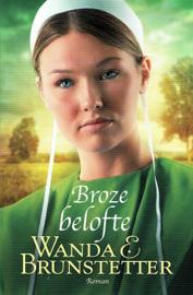 BRUNSTETTER, Wanda E. - Serie Indiana Amish - 3 delen