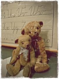 HONEY BEARS / kleine beer niet meer beschikbaar.