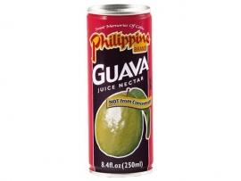 Guava Juice / Philippine Brand / 250 ml