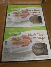 Black Tiger Shrimp / SEACON / 800graam