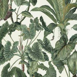Behang Expresse Paradisio behang 6303-07
