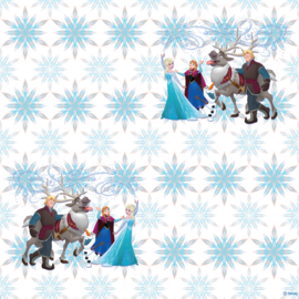 Dutch Disney Frozen snow flakes  behang WPD 9732