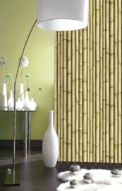 bamboe  behang    j22317