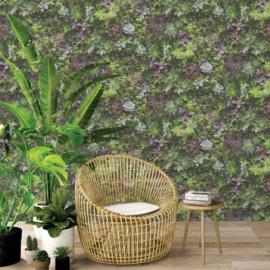 Noordwand Evergreen Behang 7322