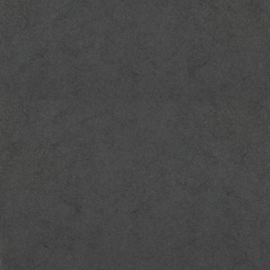 Dutch First Class Chroma behang 04-Charcoal