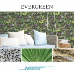Noordwand Evergreen