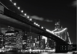 Fotobehang Brooklyn Bridge FTS1305