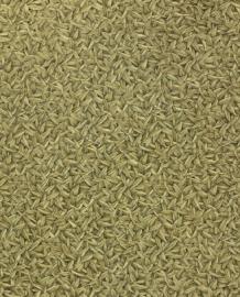 Glööckler Vliestapete bruin behang 52504