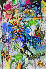 Behangexpresse COLORchoc Wallprint Graffiti Park INK 6071