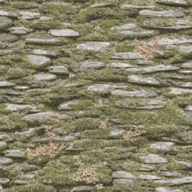 Noordwand Evergreen Behang 7336