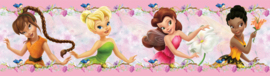 Dutch Disney Fairies behangrand WBD 8062