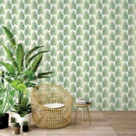 Noordwand Evergreen Behang 7325