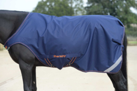 BUCAS RECUPTEX THERAPY WALKER TURNOUT