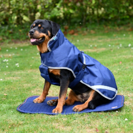 BUCAS RECUPTEX DOG BED SIZE S