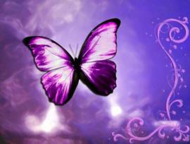 Vlinders bij overlijden