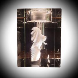 3D Foto met urn en waxinehouder