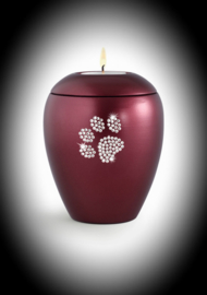 Crystal paw pet urn with candle -wine