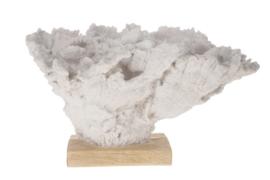 Beeld - sculptuur - porselein koraal