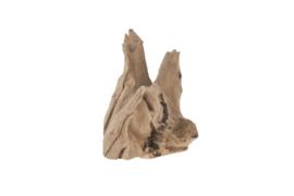 Houten kunst - Beeld - sculptuur - houtenstronk