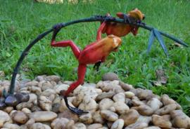 Tuinbeeld - glassculptuur - beeld - rode kikkers