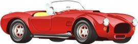 13x40 - Wanddecoratie auto - Oude Ferrari