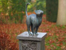 Bronzen beeld - Tuinbeeld - beeld  - kat - Bronzartes - 31 cm hoog - voor huis en tuin