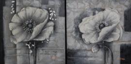 60 x 60 cm - Olieverfschilderij 2-luik - Bloemen