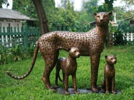 Tuinbeeld - groot bronzen beeld - cheetah familie - Bronzartes