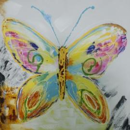 100 x 100 cm - Olieverfschilderij - Kleurrijke vlinder