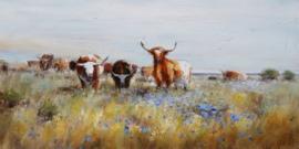 Olieverfschilderij - Koeien- 60x150 cm