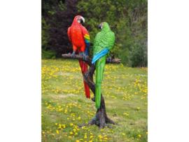 Tuinbeeld - groot bronzen beeld - gekleurde papegaaien - Bronzartes