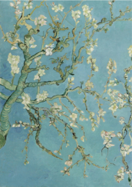 Schilderij Dibond - Foto op aluminium - Amandelbloesem - Vincent van Gogh