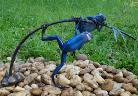 Tuinbeeld - glassculptuur - beeld - blauwe kikkers