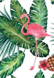 Schilderij Dibond - Flamingo