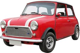 33 x 22 cm - Wanddecoratie metaal oldtimer - Auto Mini