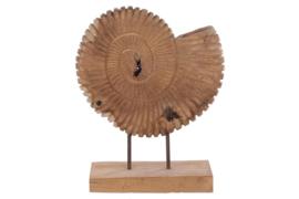 Houten kunst - beeld - sculptuur - houten schelp
