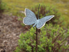 Metalen tuinsteker - tuindecoratie - Vlinder
