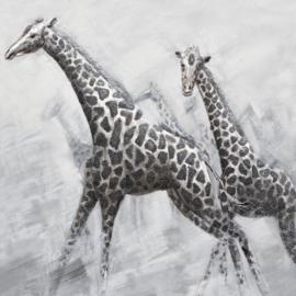 100 x 100 cm - Olieverfschilderij - Giraffen - dieren