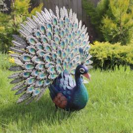 Tuinbeeld  - beeld metalen Pauw
