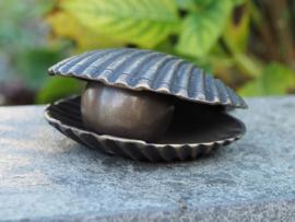 Urn - brons - Oester met parel - Bronzartes - 7 cm hoog