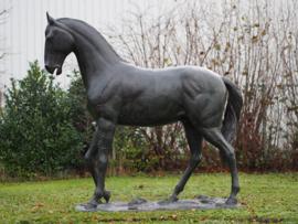Tuinbeeld - groot bronzen beeld - Paard - Bronzartes