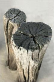Foto op hout - Paalhoofden