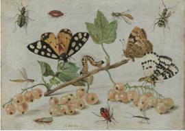 120 x 80 - Plexiglas schilderij - Natuur - klassieke kunst afbeelding op acryl