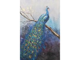80x120 cm - Olieverf schilderij - schilderij pauw - handgeschilderd