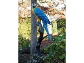 Tuinbeeld - groot bronzen beeld - blauwe papegaai - Bonzartes