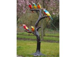 Tuinbeeld - bronzen beeld - Papegaaien - Bronzartes