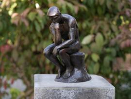 Tuinbeeld - bronzen beeld - naakte man - Bronzartes
